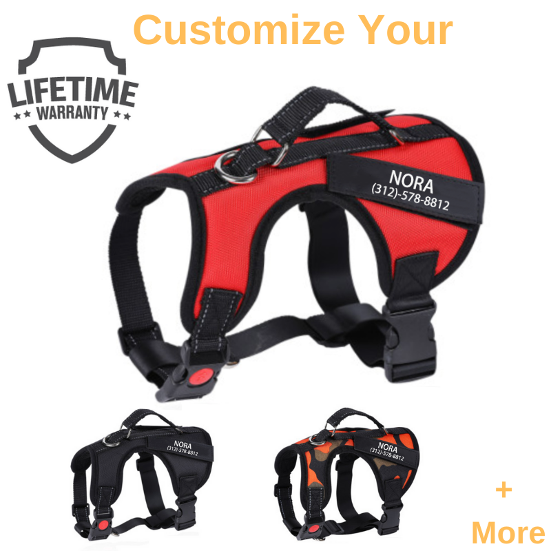 Personalized PawBark™ No Pull Dog Harness
