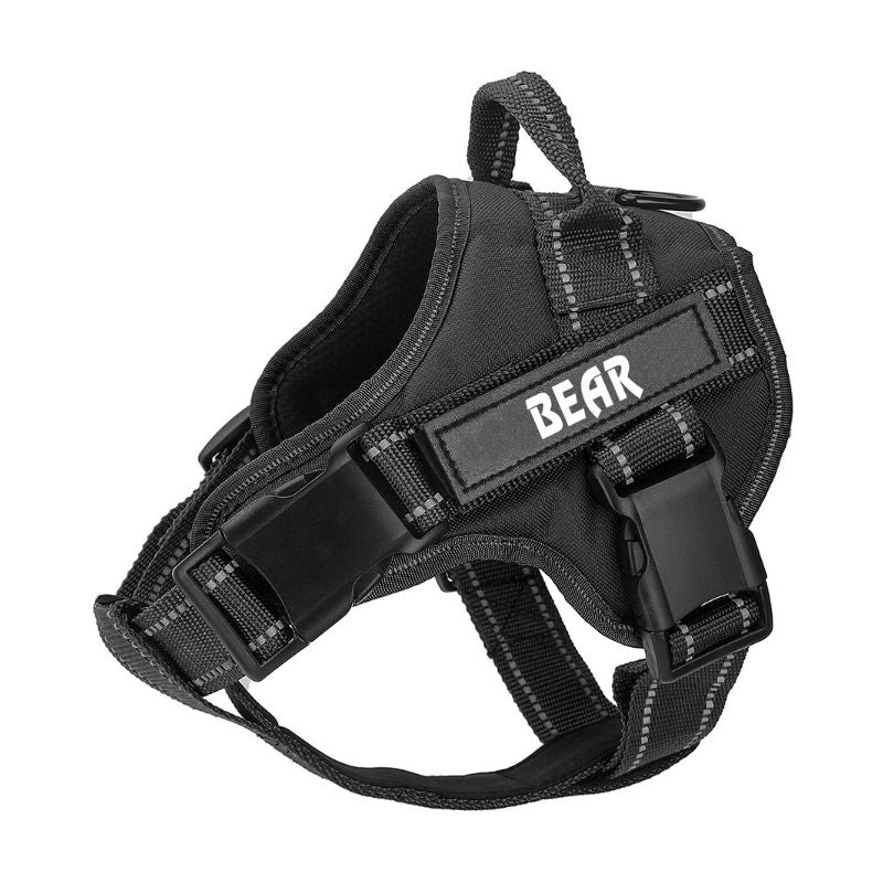Personalized PawSpirit™ No Pull Dog Harness (2020)
