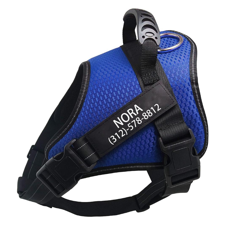 Custom No Pull Dog Harness Blue
