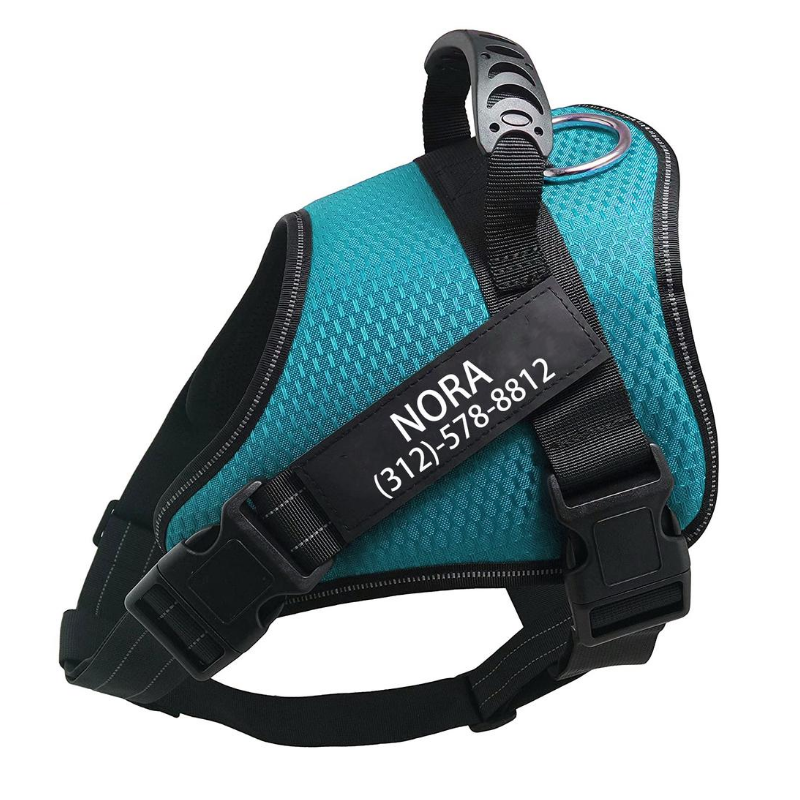 Custom No Pull Dog Harness Light Green