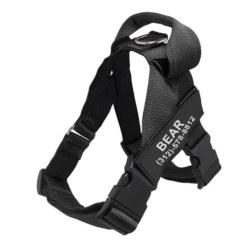 Personalized PawRock™ No Pull Dog Harness (2020)