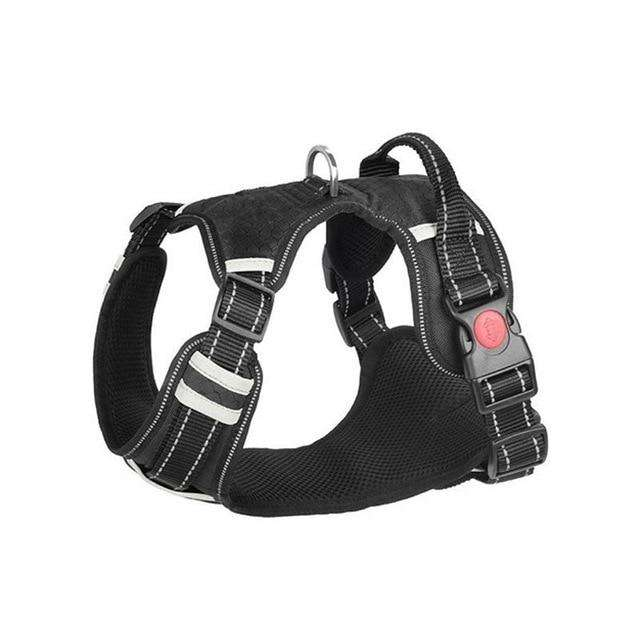 All-In-One™ No Pull Harness-Paw Roll,S (7-20 LBS)