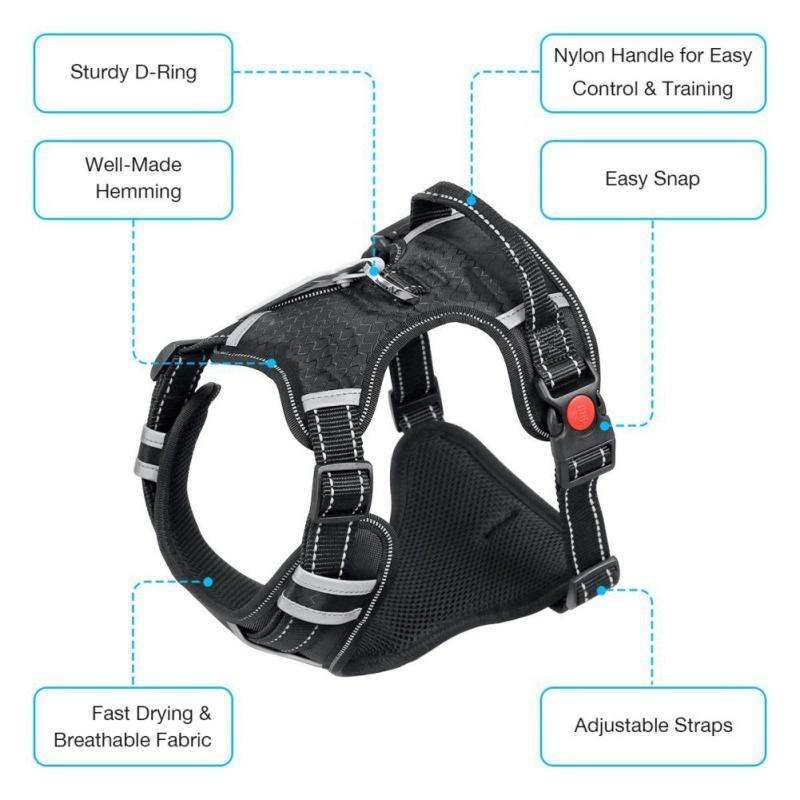 All-In-One™ No Pull Harness-Paw Roll