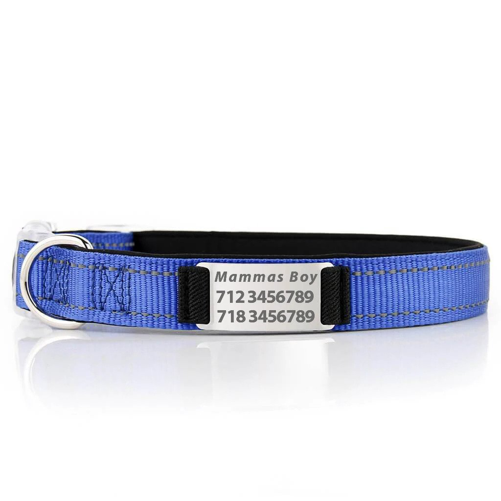 Personalized PawRoll Dog Collar