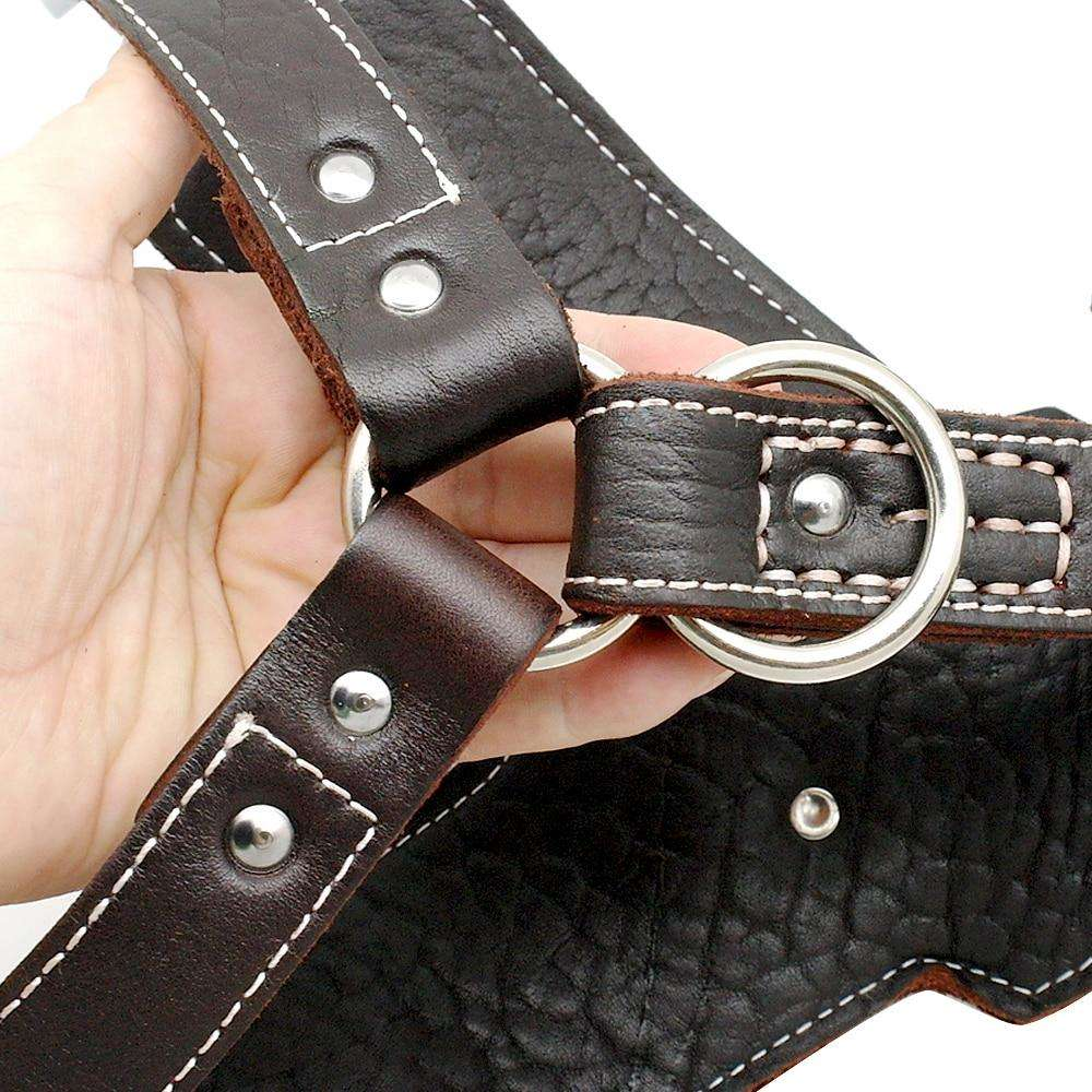 Leather All Purpose™ No Pull Dog Harness-Paw Roll