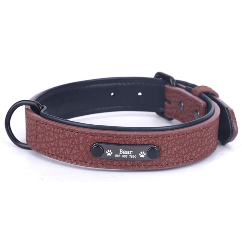 Leather Personalized All Purpose™ Dog Collar (2020)-Paw Roll,S / Brown