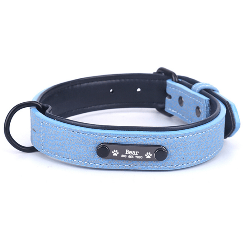 Leather Personalized All Purpose™ Dog Collar (2020)-Paw Roll,S / Sky Blue