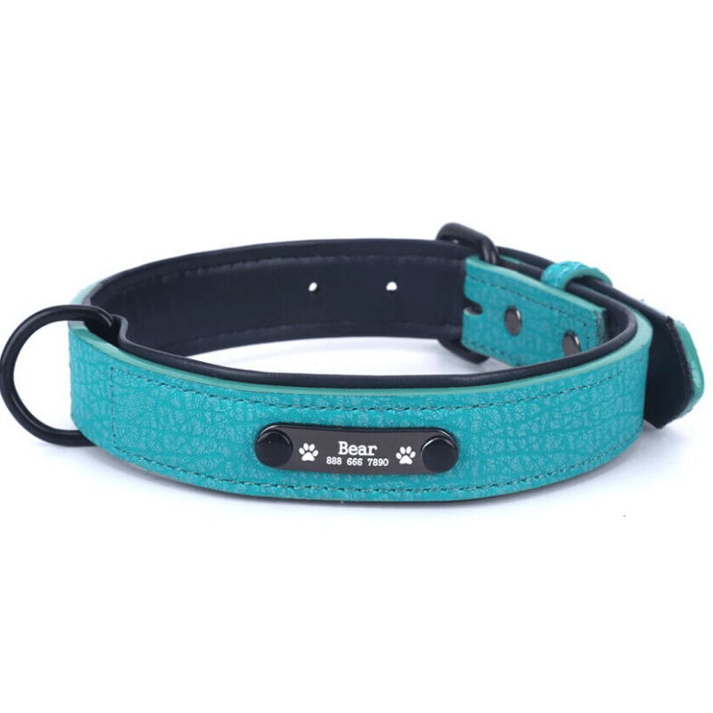 Leather Personalized All Purpose™ Dog Collar (2020)-Paw Roll,S / Pearl Green