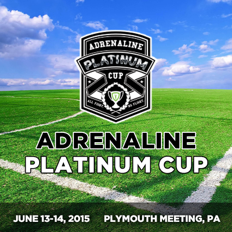 Picture of Platinum Cup 2015
