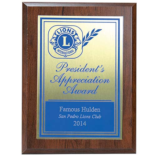 PRESIDENTS APPRECIATION AWARD