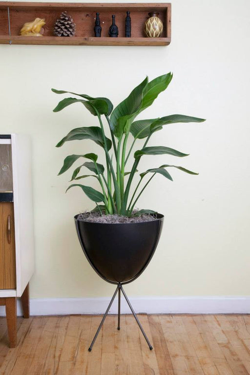 "Fiberglass bullet planter Medium 23"" tall"
