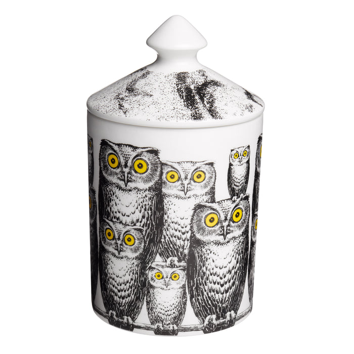 Fornasetti candle Owls  300g