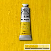 WOC Cadmium Yellow Pale Hue (Winton Oil-Winsor & Newton)