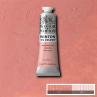 WOC Pale Rose Blush (Winton Oil-Winsor & Newton)