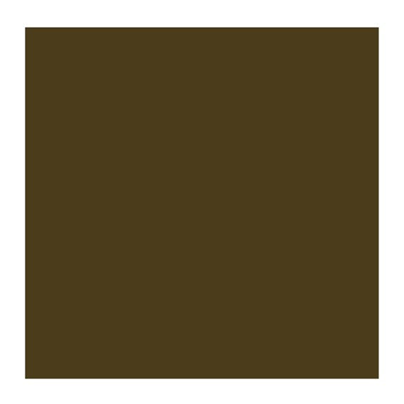 ROC RAW UMBER 408 1 (Rembrandt Oil Colour)