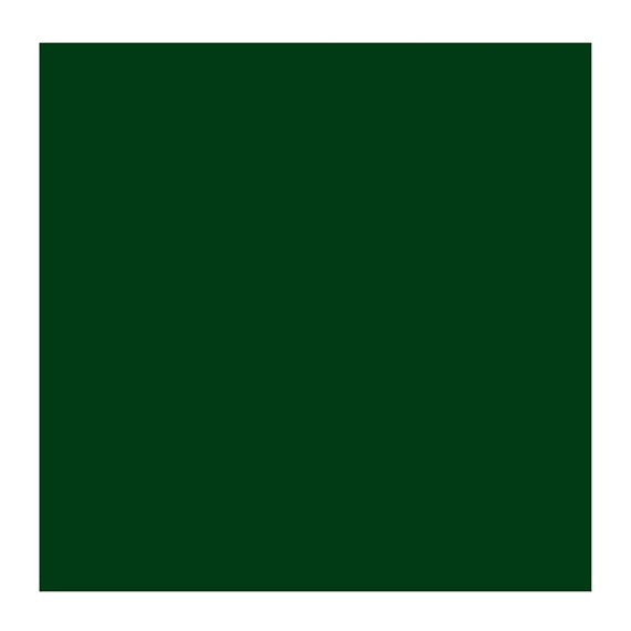 ROC GREEN EARTH 629 1 (Rembrant Oil Colour)