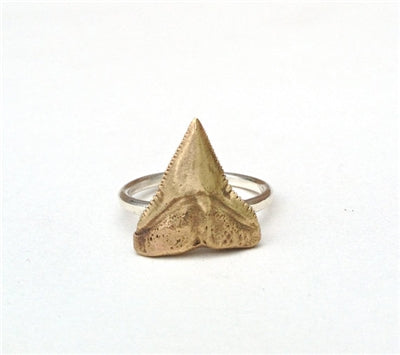 Bronze Shark Tooth Ring
