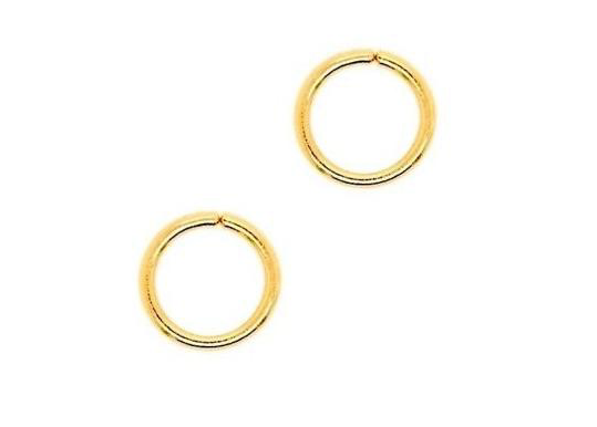 Tiny Gold Hoop - No Hinge