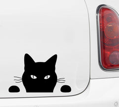 "CAR - Soon CAT  - Vinyl Car Decal - ©YYDC (7.25""w x 4.5""h) (Color Choices)"