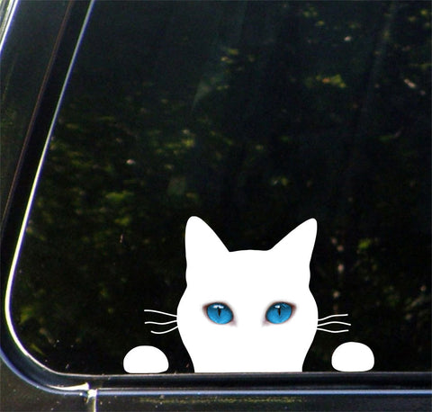 "CLR:CAR - White Cat - Soon Cat - Watching - Peeking - Vinyl Car Decal - Copyright © 2015 Yadda-Yadda Design Co. (7.25""w x 4.5""h)"