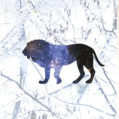 "CLR:WND - Cosmic Lion - Galaxy Star - Vinyl See-Through Window Decal © YYDC. (6""w x 3.25""h"")"