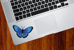 "CLR:TP - Color Butterfly - D1 - Trackpad / Keyboard - Vinyl Decal - ©YYDC (3.25""w x 2""h) (Color Choices)"