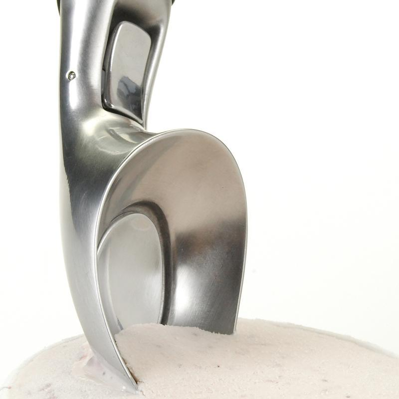 Beak Ice Cream Scoop