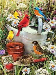 Paint by Number - Garden Birds