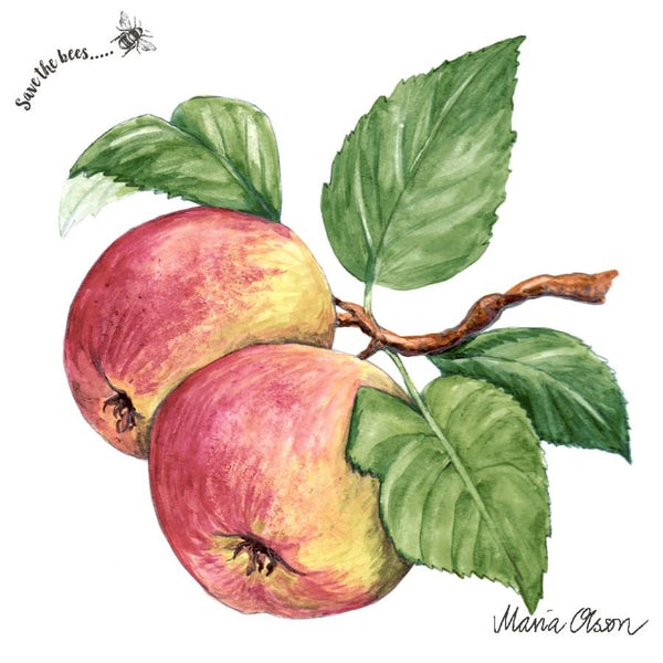 Apple Luncheon Paper Napkins | Kitchen Art | Wrapt