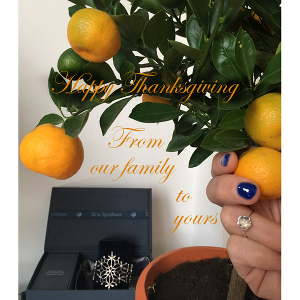 Happy Thanksgiving from our family to yours, photo of a hand picking an orange from a tree with snowflake cuff and cherry blossom ring