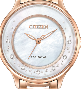 Eco Drive Circle of Time Watch