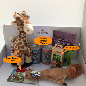 Toys and Treats Subscription