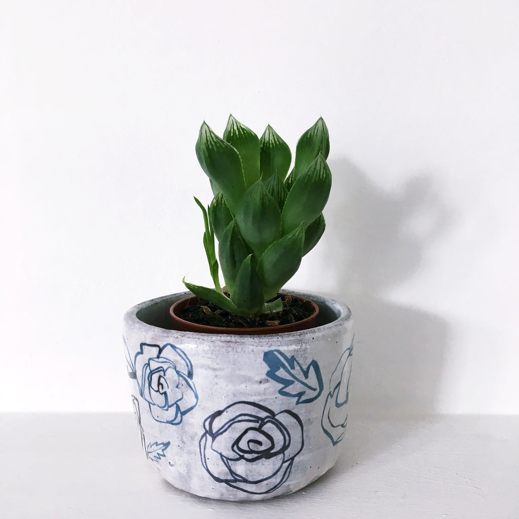 Blue And White Plant Pot - 2