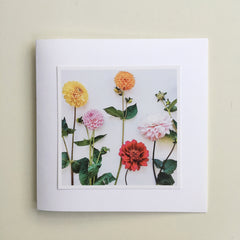 Two Greetings Cards  - Floral
