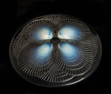 Rene Lalique Glass Coquilles Pattern Opalescent Plate Art Deco c1924 - Nr 3011 (Code 2331)