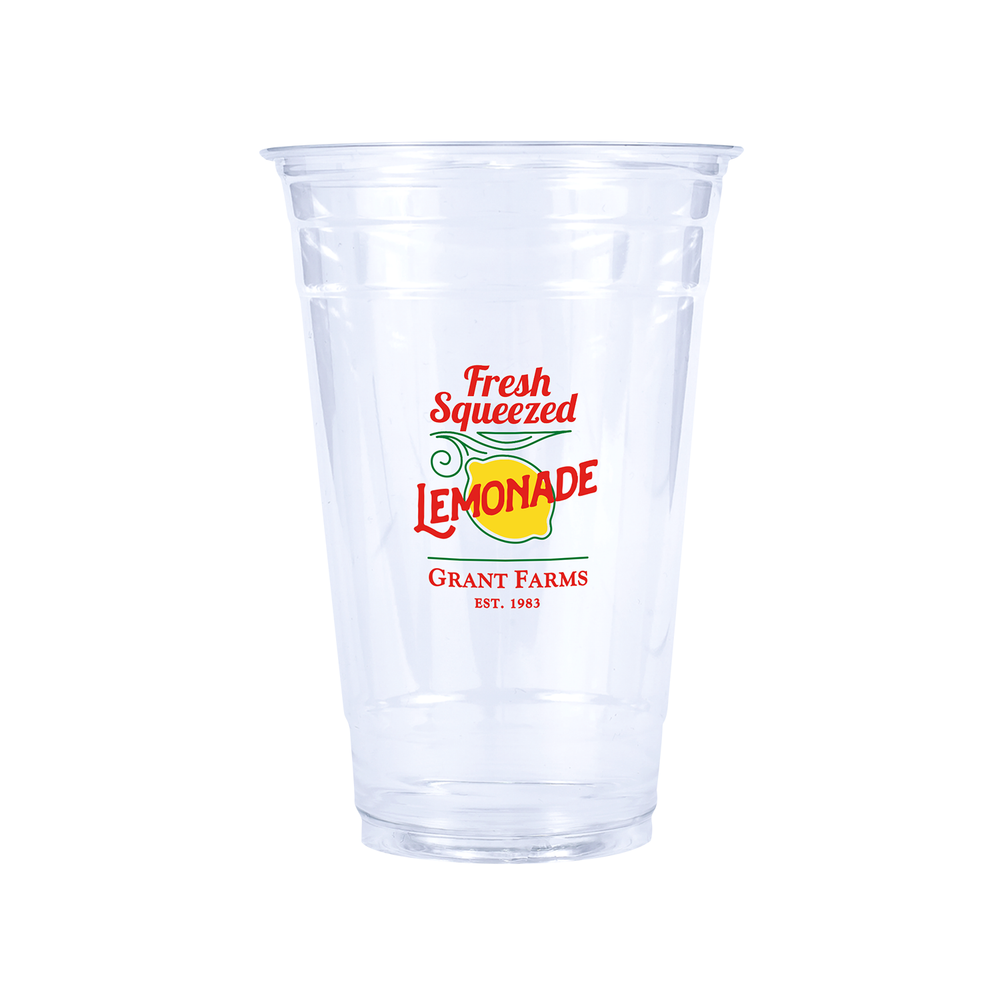 24oz Custom Printed Clear Plastic PET Cups