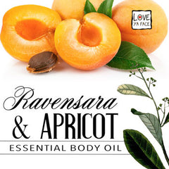 Ravensara and Apricot Essential Body Oil