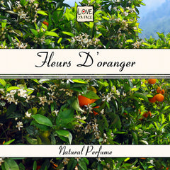 Fleurs D'Oranger Natural Essential Oil Perfume