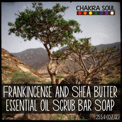 Frankincense and Shea Butter - Scrub Bar Soap