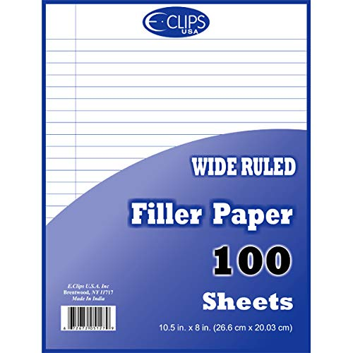 Filler Paper, 100 Count, Wide Ruled, Case Pack of 60, Ideal for Bulk Buyers