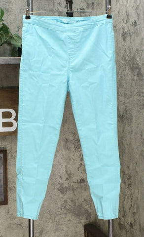 DG2 by Diane Gilman Women's Up-Lifter Pull On Skinny Jeans Aqua Petite Medium