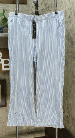 DG2 by Diane Gilman Women's Plus Size SoftCell Chambray Stripe Wide Leg Pants 2X