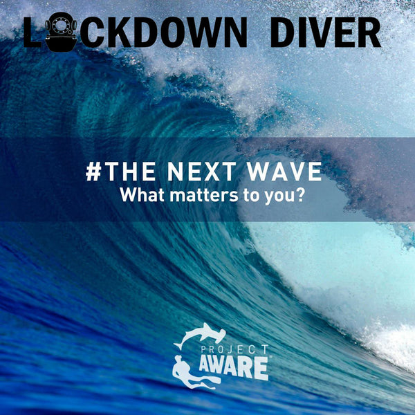 LOCKDOWN DIVER: What is Project AWARE