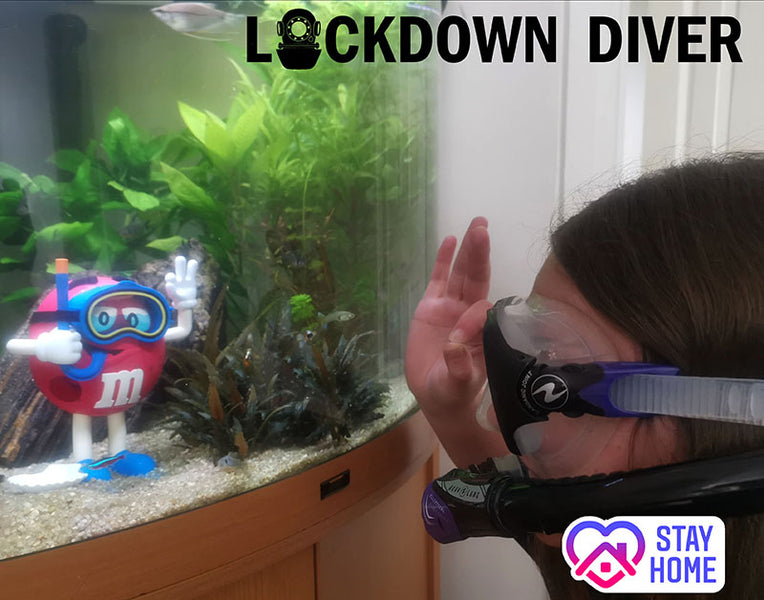 LOCKDOWN DIVER - Maintaining Your Kit, Get Dive Ready!