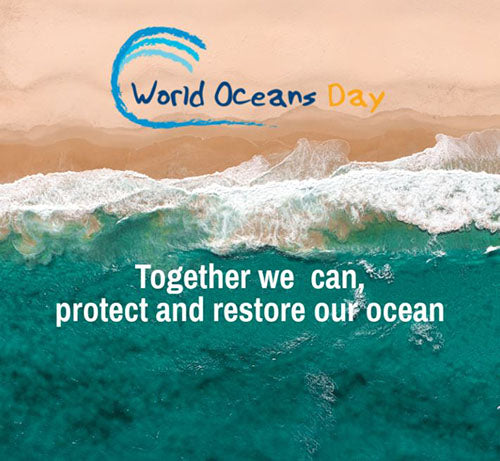 WORLD OCEAN'S DAY - Learn about our big blue.
