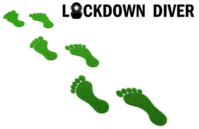 LOCKDOWN DIVER: What is your carbon footprint and how can you reduce it?