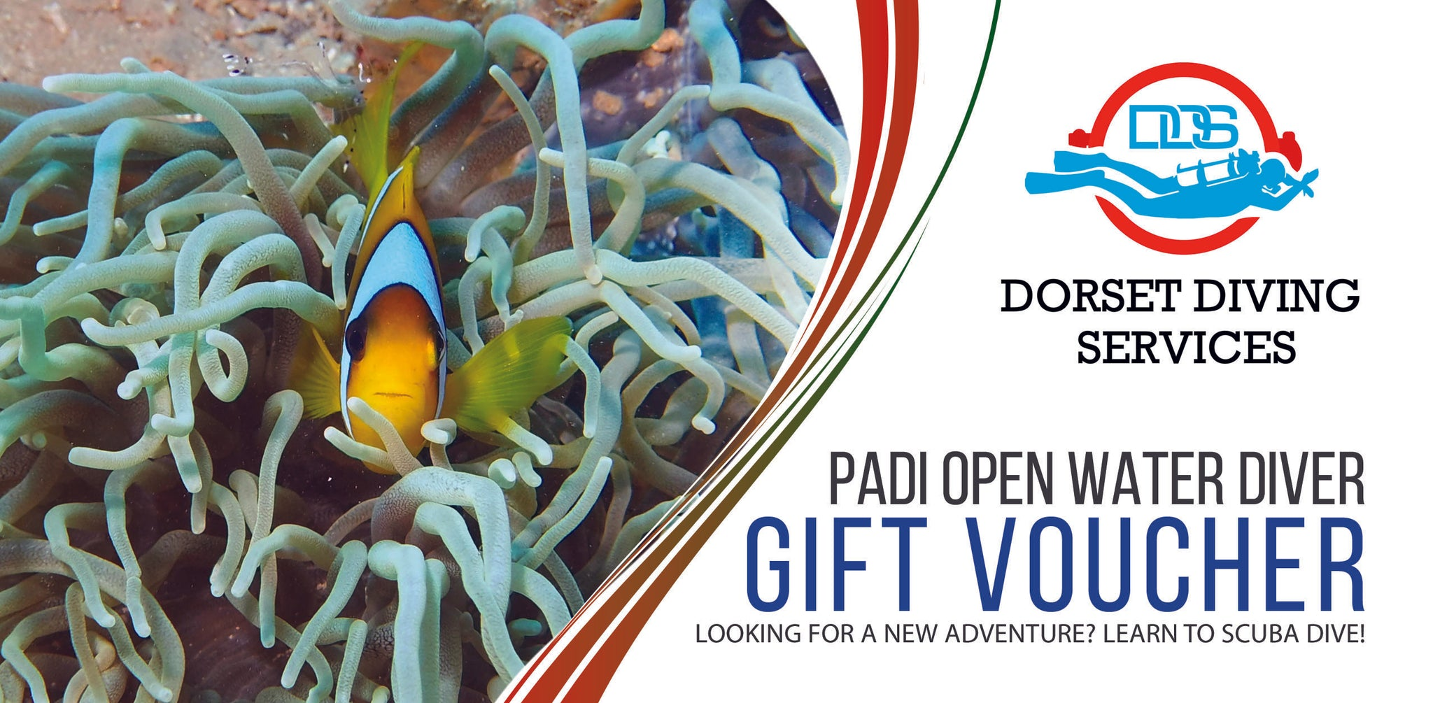 PADI Open Water Course Gift Voucher