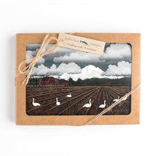 "Load image into Gallery viewer, Greeting Cards - Bellingham Mud Swans - six 6x4"" folded art cards with envelopes"