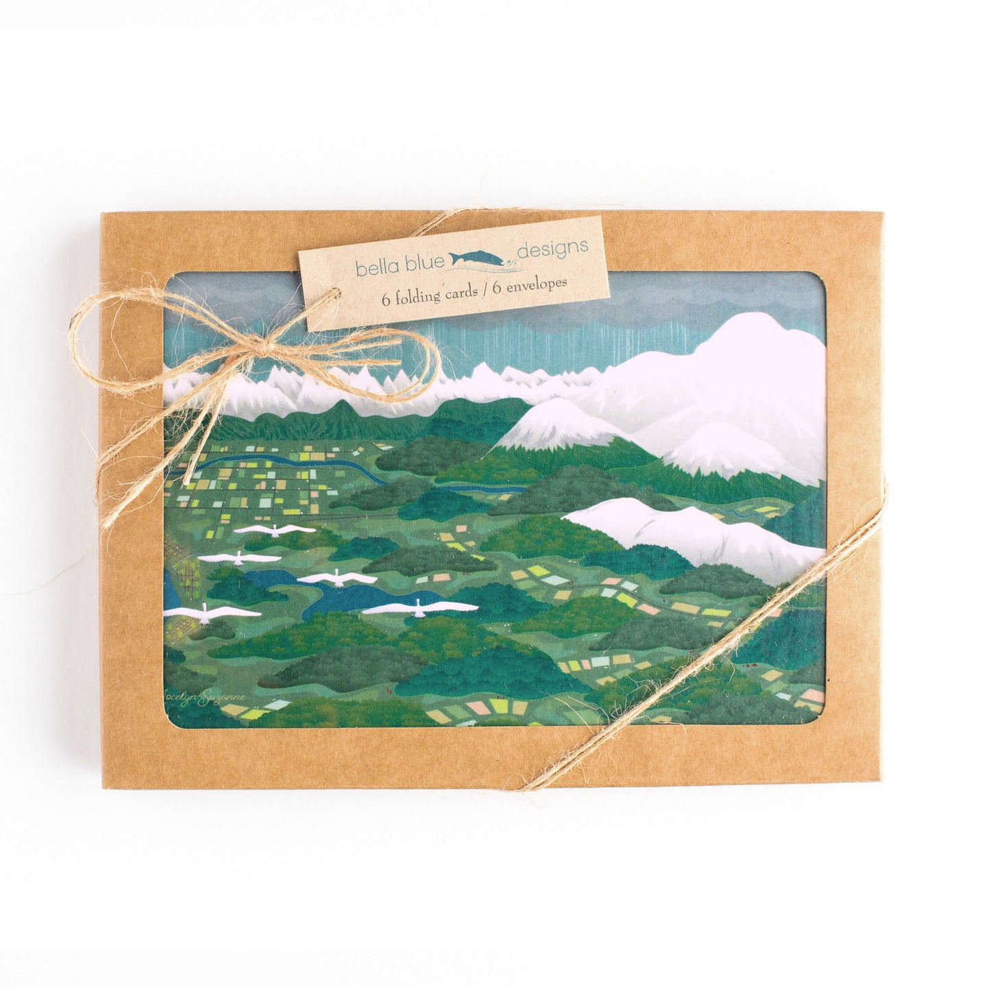 Box Set of six Greeting Cards - Swans Above Whatcom - 6x4