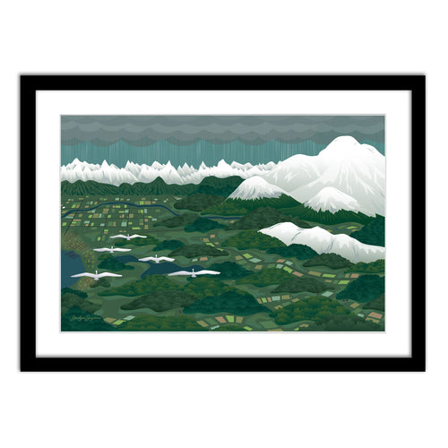 Art Print - Swans Above Whatcom - Framed Giclee Print